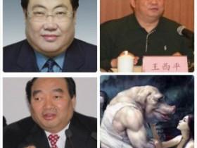 今日之声(2012年11月26日)公务员是中国的精英队伍
